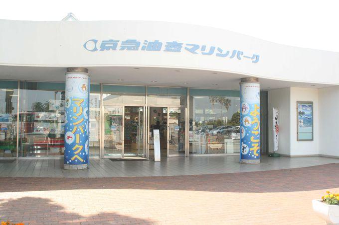 45年の歴史がある水族館