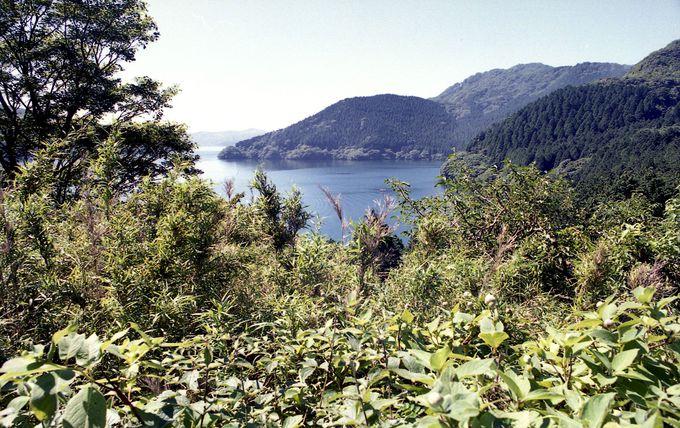 芦ノ湖を見下ろすことができるポイントはどこ?