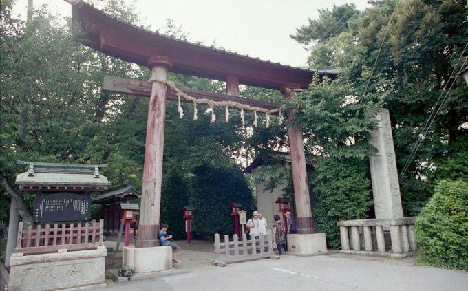 なんと!! 関東では最も古い神社なのです