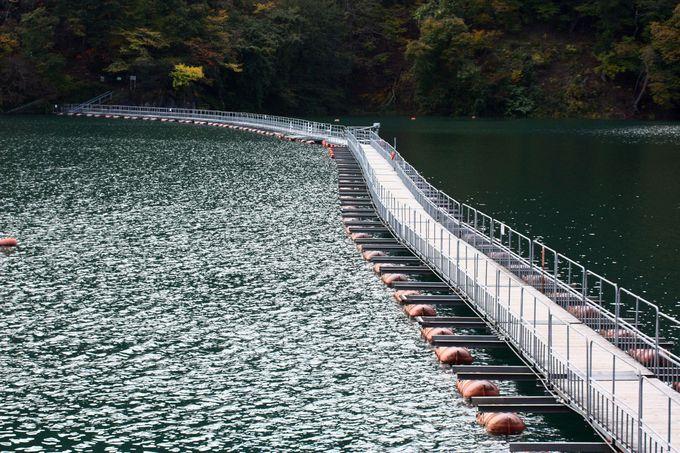 遊歩道に続く奥多摩湖の名物「ドラム缶橋」
