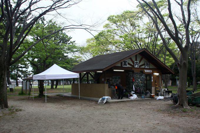 都心からもアクセス良好なキャンプの穴場