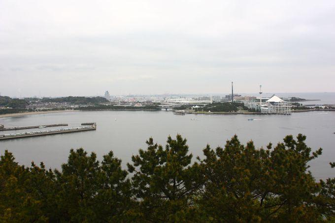 展望台からは横浜の海の風景が……