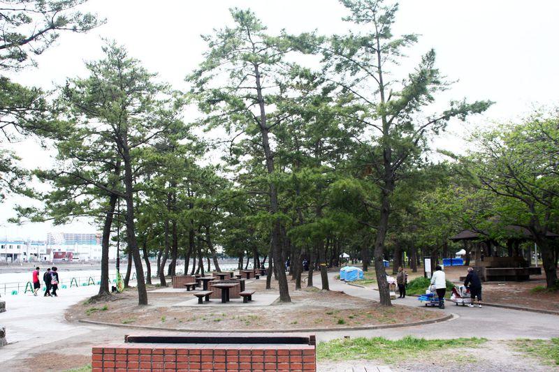 横浜・野島公園でバーベキュー、キャンプ、潮干狩りをエンジョイ!!