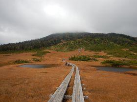 福島県檜枝岐村から行く!東北最高峰・燧ケ岳と尾瀬沼トレッキング