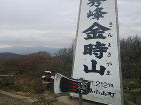 リピーター続出の金時山!箱根仙石原から登る絶景トレッキング