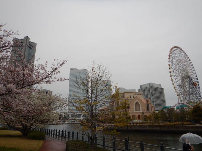 会場は横浜港大さん橋のイベントホール
