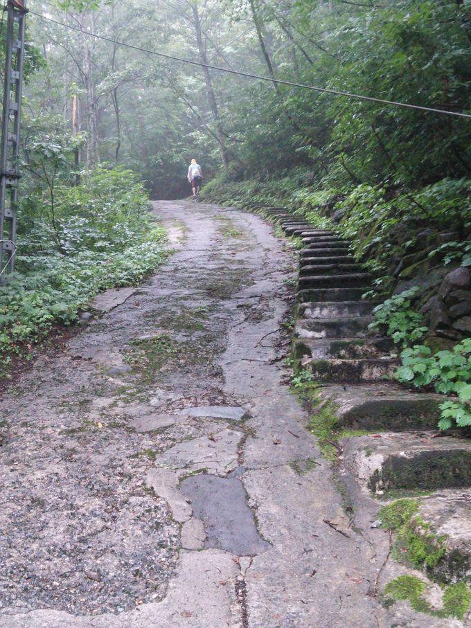 滑りやすい急坂を歩いて、最後に吊り橋