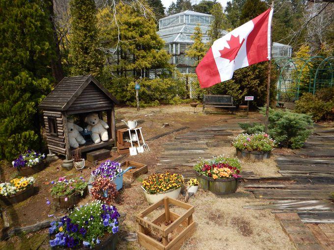 カナダ村へはミニSLで移動が人気