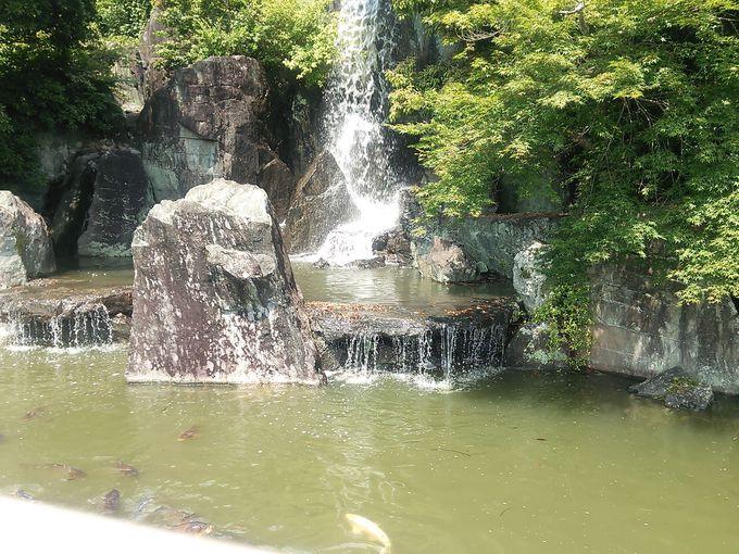 広大な池や滝を配した日本庭園も