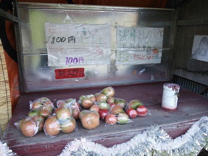 無人販売もある南郷特産のトマト