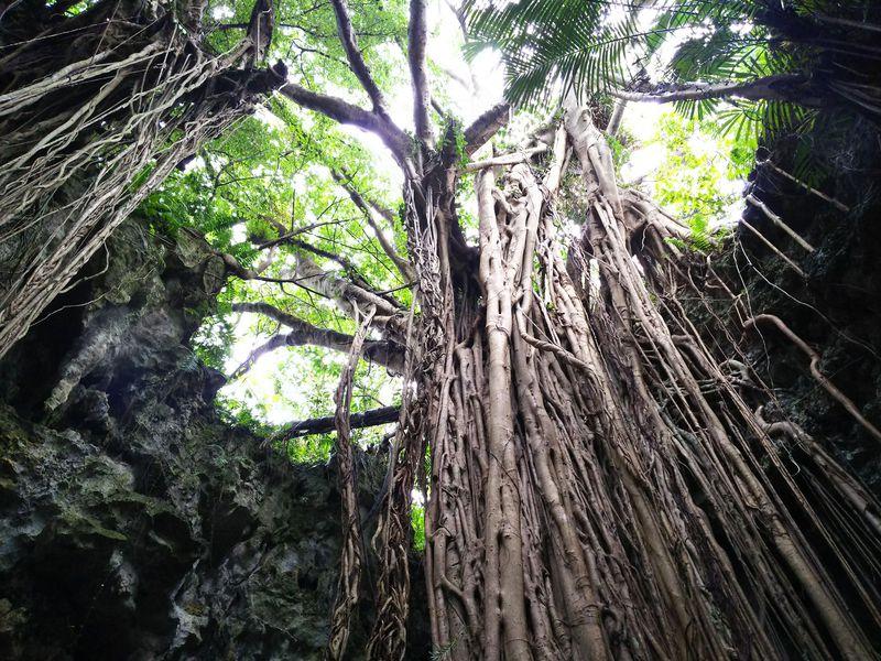 神秘と絶景が満載!沖縄で行きたいパワースポット10選