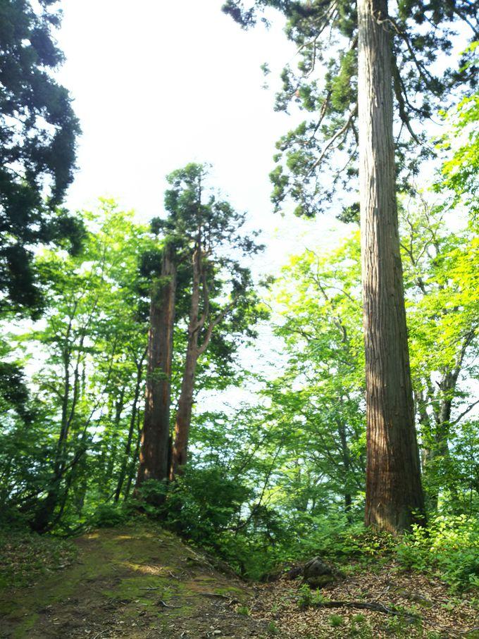スタートは、福島県喜多方市山都町の川入口、標高差900メートルの急坂越えて稜線へ
