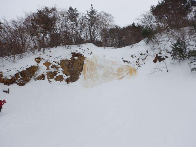 冬季限定で出現するイエローフォール
