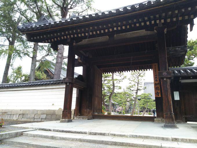 京都大学近くの百萬遍知恩寺