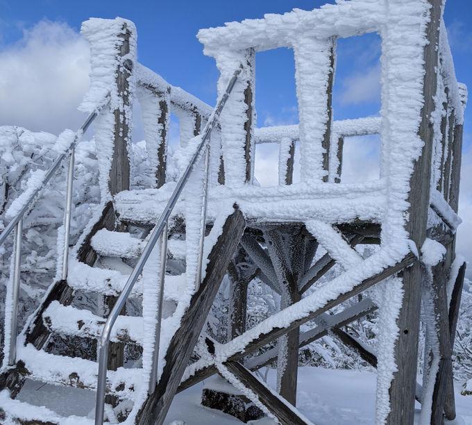 樹氷・霧氷などの雪の芸術