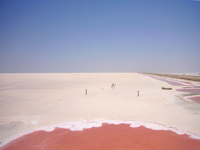 巨大塩湖 ショット・エル・ジェリド