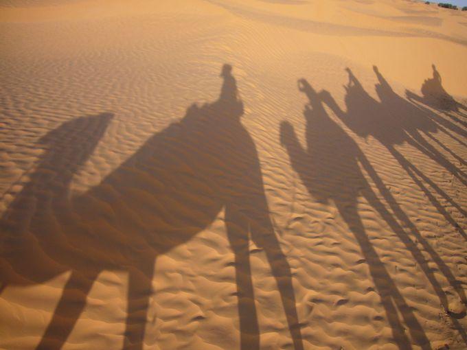 サハラ砂漠でキャメル・ライド