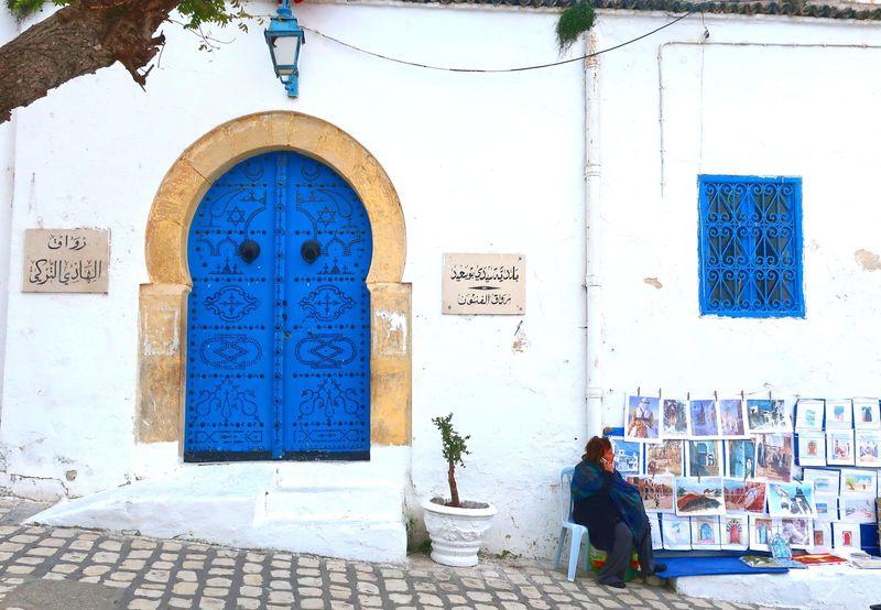 チュニジアンブルーが美しい街「シディ・ブ・サイド」