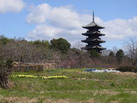 備中国分寺と吉備津神社、吉備津彦神社で吉備路を楽しむ。