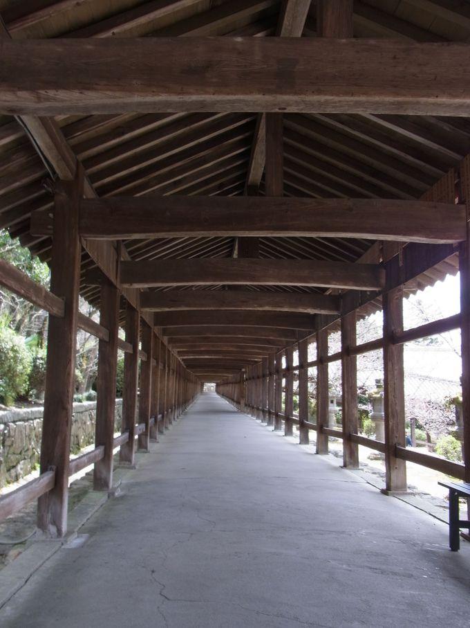 見るものを圧倒する驚くほど長い回廊。