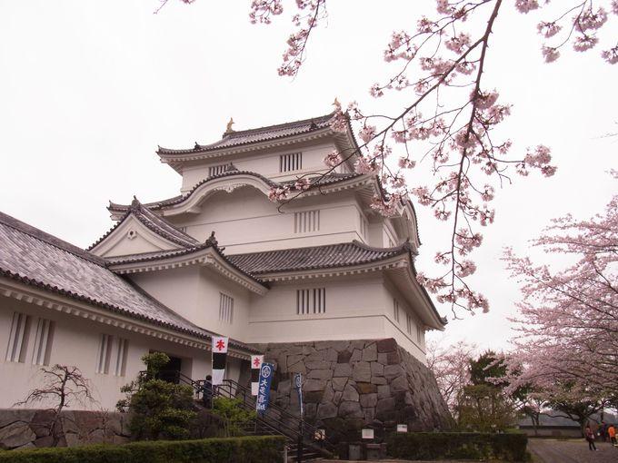 徳川四天王の一人・本多忠勝の大多喜城のある「大多喜」の町も訪ねてみてください。