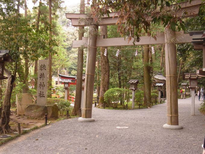 大神神社ご神体・三輪山へ登る前に知っておきたいこと。