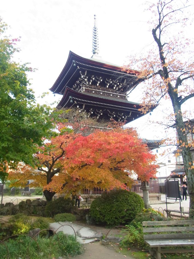 秋には見事な大銀杏の黄葉が楽しめる「飛騨国分寺」