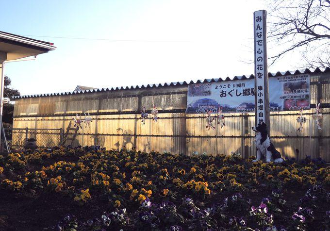 思わず「きれい!」と声を上げる人続出!小串郷駅ホームの見事な花壇