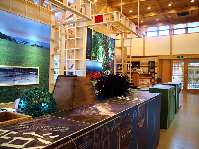 自然を学ぼう!種差海岸インフォメーションセンター