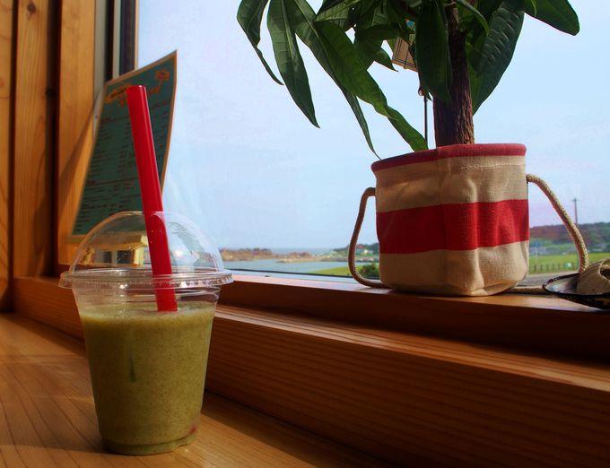 海藻のスムージー!?海カフェ たねさし