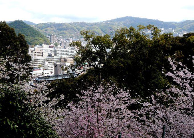 松山城ロープウェイのりばから、いざ松山城へ