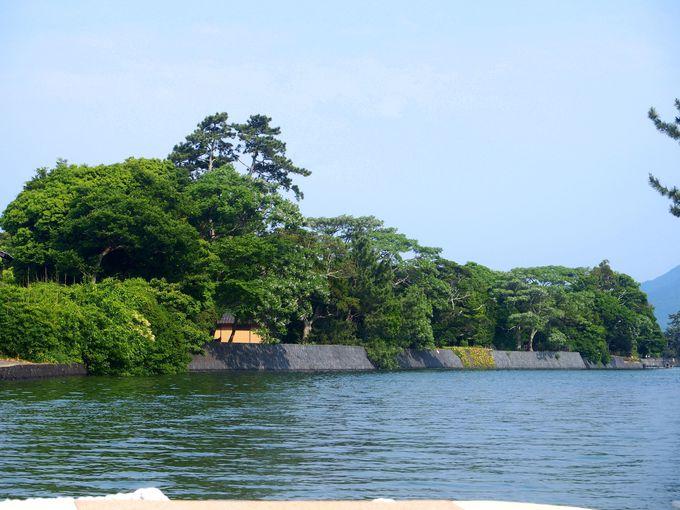 松並木に白壁・・萩八景遊覧船から見る萩城下町はひと味違う
