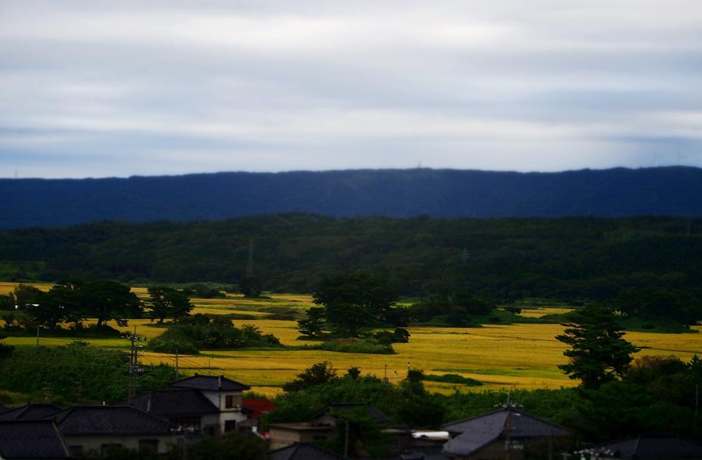道の駅象潟「ねむの丘」展望塔から九十九島を一望