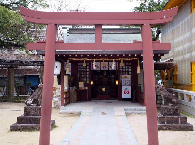 松原梛木社で縁結びの神木に水引を結ぼう