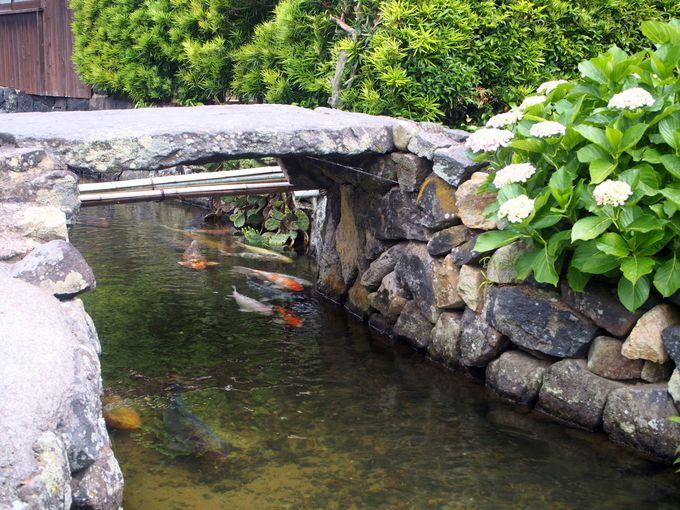 16時頃〜:町の中を鯉が泳ぐ藍場川と「旧湯川家屋敷」へ