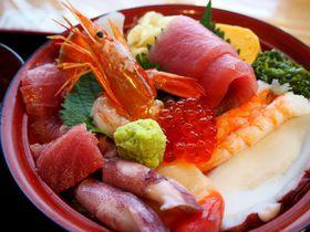 海鮮丼に注目の看板犬も!宮城「シーパルピア女川」に復興のにぎわい集う