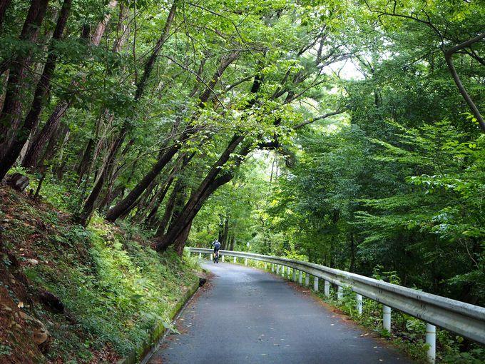 トトロの名曲「さんぽ」の舞台になった信夫山へ行こう