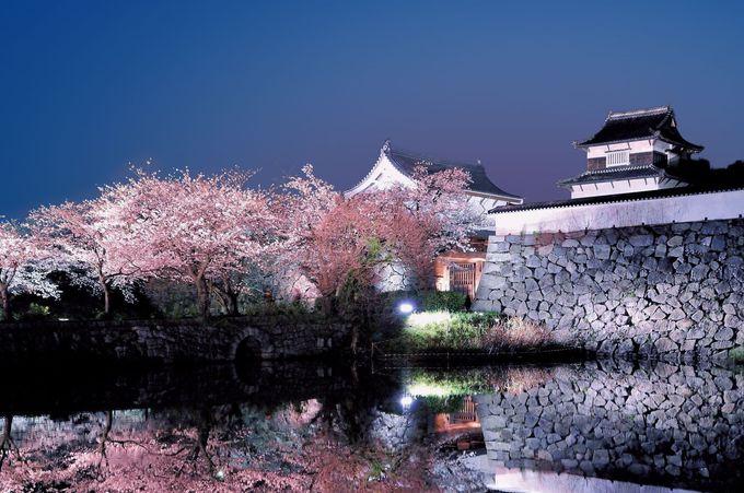 福岡城さくらまつりの始まりは上之橋か下之橋から!
