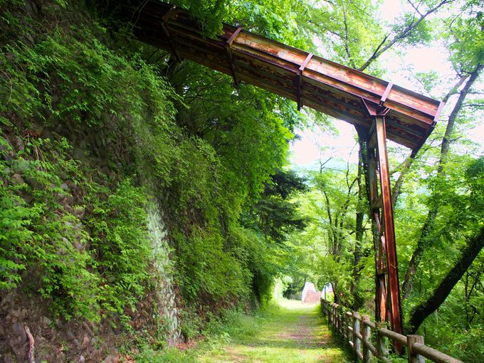 廃線跡ならではの寂れた風景の美も…琴平トンネルと遊歩道