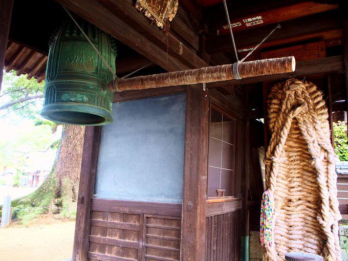長尾寺の山門(仁王門)と重要文化財の経憧