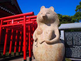縁結び・福運・子宝を招く狸に会おう!香川高松「屋島寺」へ