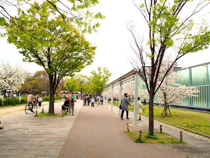 京都水族館や京都鉄道博物館とあわせて回れる!