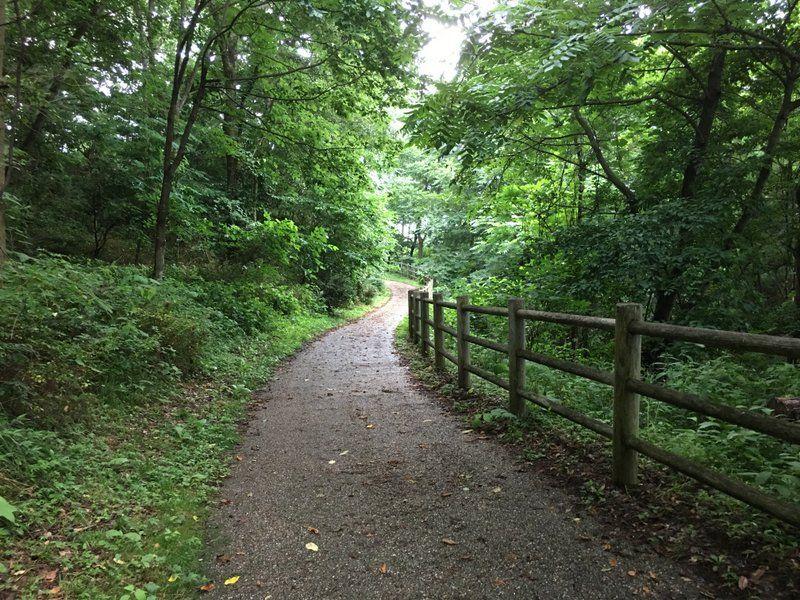 静かな森を感じるなら北入口エリア