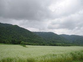 北海道のルーツもココに。道内で一番小さな村「音威子府村」を巡る旅