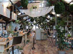 ガーデニングに留まらない!大阪「ザ・ファーム・ユニバーサル」は植物の楽園