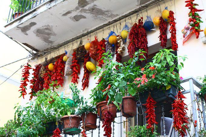 カラブリア州最大のお祭り、ペペロンチーノ祭り