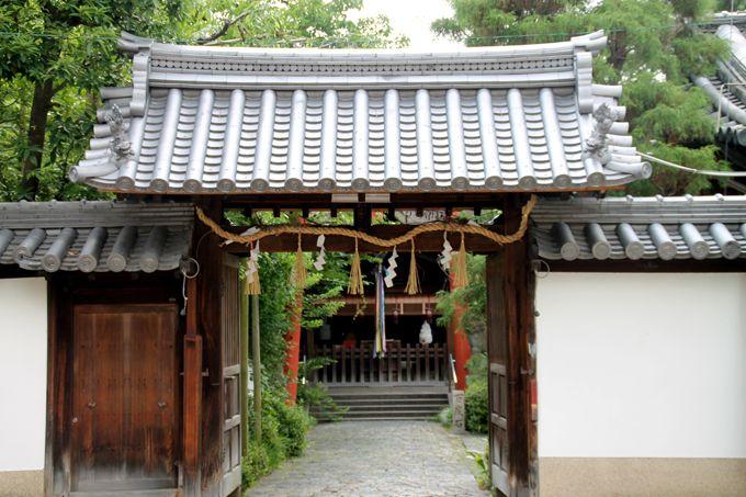 これぞ饅頭のご霊験!?大好きな饅頭の神様が祀られる漢國神社で命拾い!
