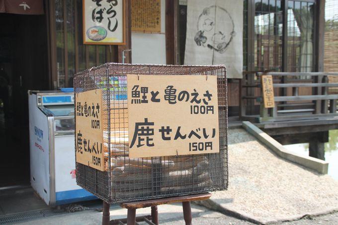 奈良町散策、疲れたら一休み