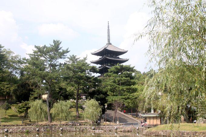 南都八景のひとつ!奈良「猿沢池」から興福寺・五重塔を眺める