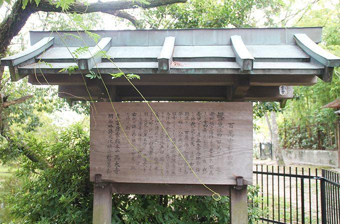 西大寺の百萬古柳